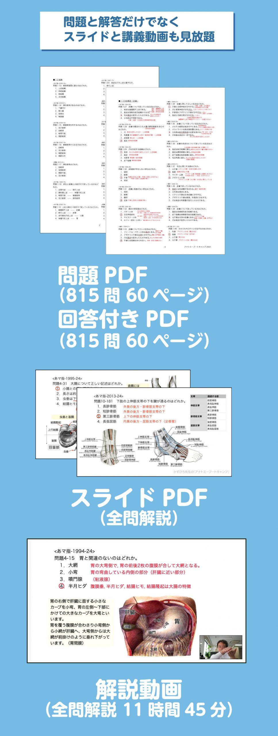 問題と解答だけでなくスライドと講義動画も見放題 問題PDF 815問60ページ,解答付きPDF 815問 60ページ, スライドPDF(全問解説),解説動画(全問解説11時間45分)